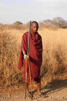 Rezenter Savannenbewohner (Massai)