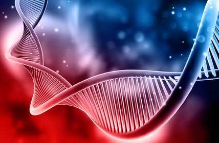 DNA Doppelhelix